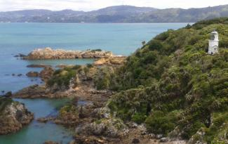 Matiu Somes Island Walk
