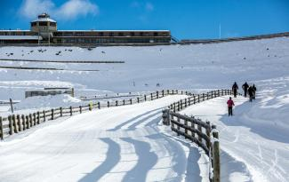 Snow Farm Skiers MS