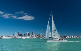 auckland harbour sailing gallery