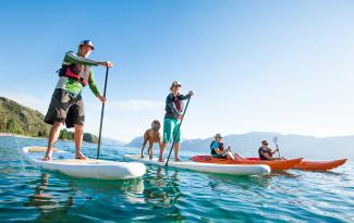 Paddle Wanaka group on SUP with dog